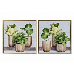 CU-170529 - Kép vászon ps 52x2,3x52 növények keret 2 féle